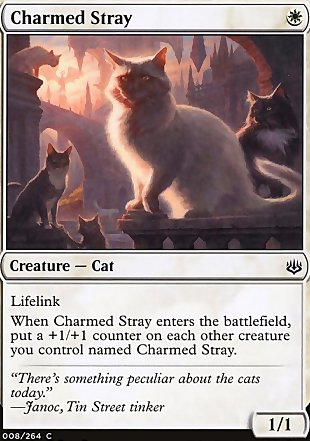 image of card Charmed Stray