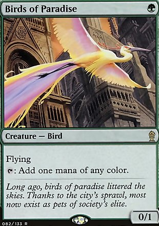 image of card Birds of Paradise