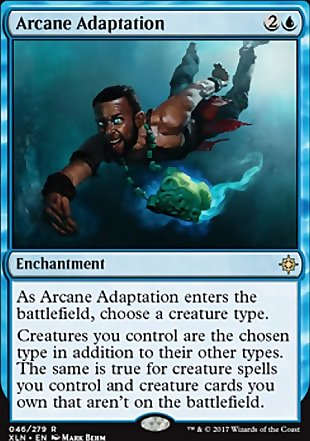 image of card Arcane Adaptation
